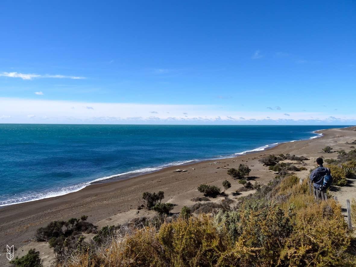 Péninsule de Valdes - Patagonie
