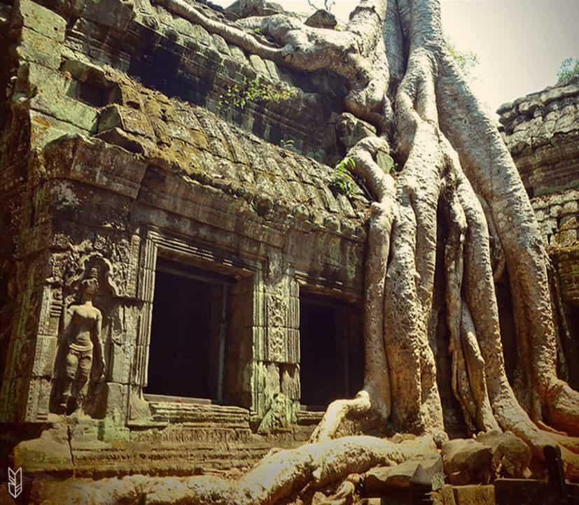 Ta Prohm - Temples d'Angkor, Cambodge