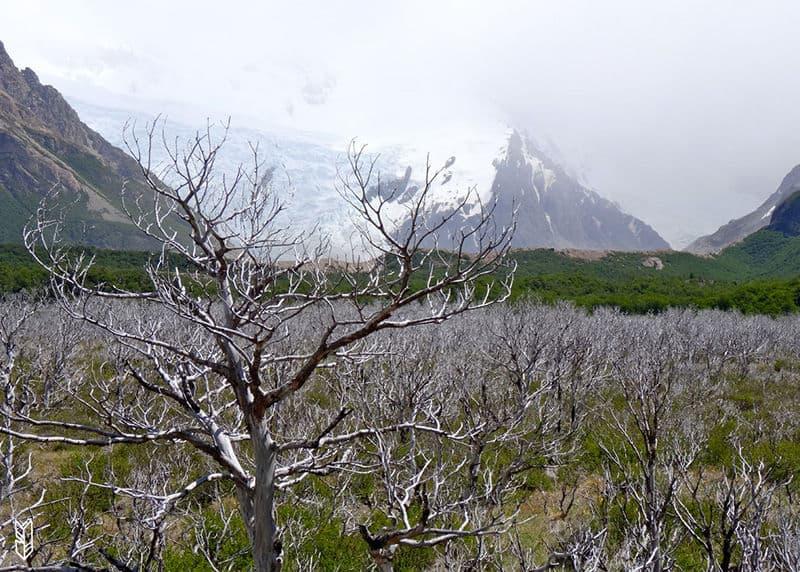 faire un Trekking en Patagonie