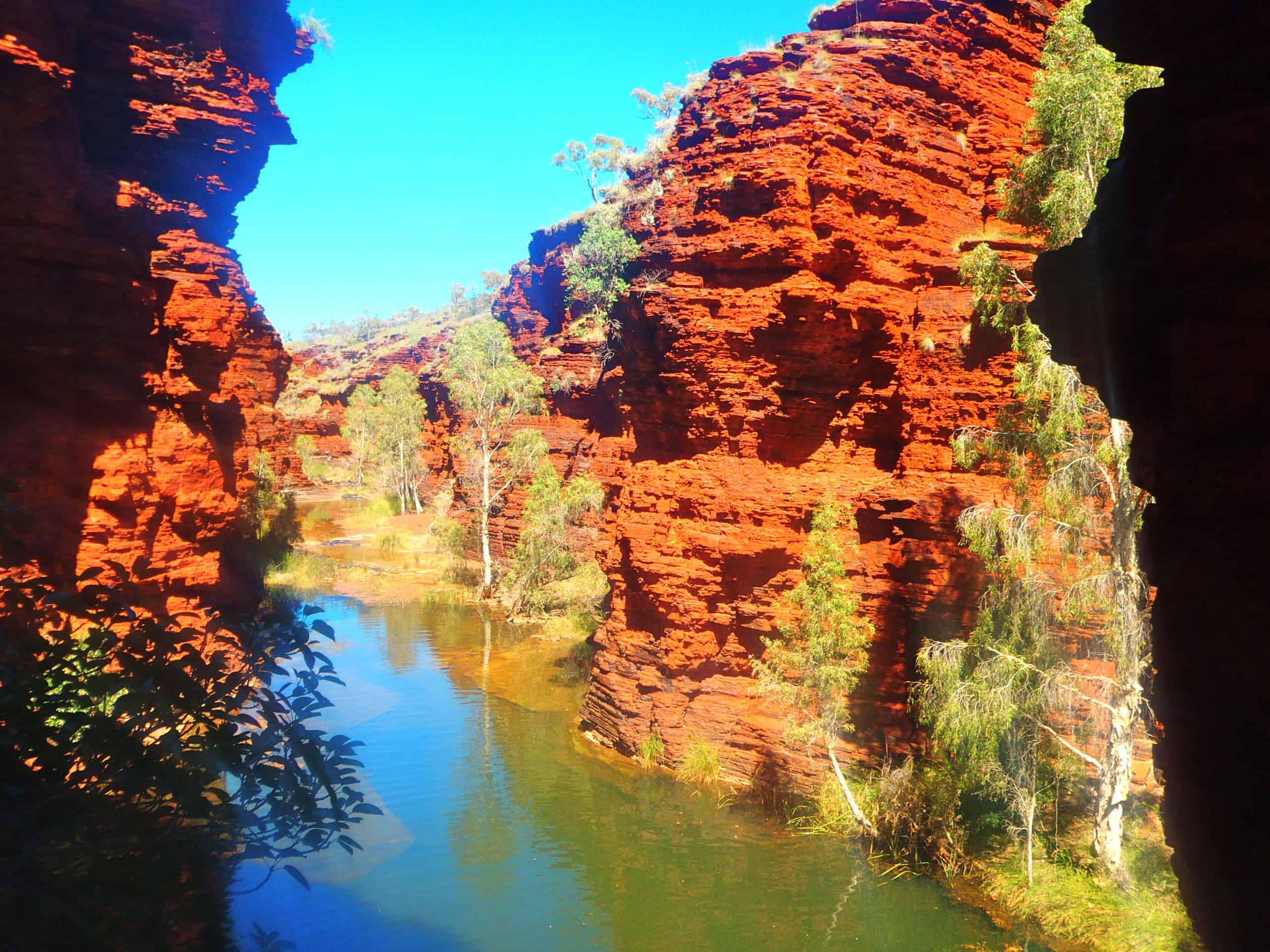 le parc national Karijiri en Australie