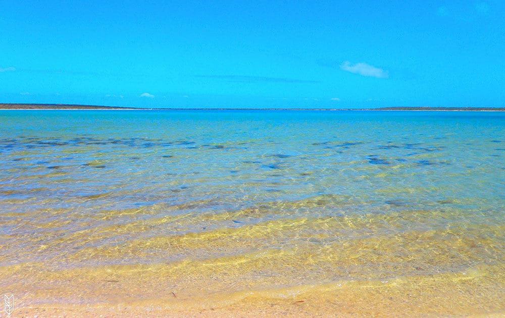 Shark Beach en Australie