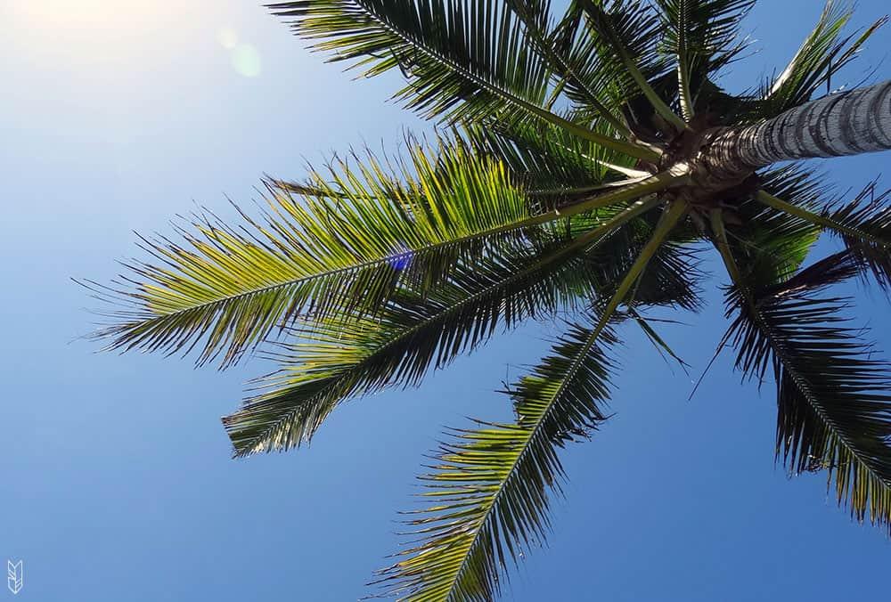 un été à Bali