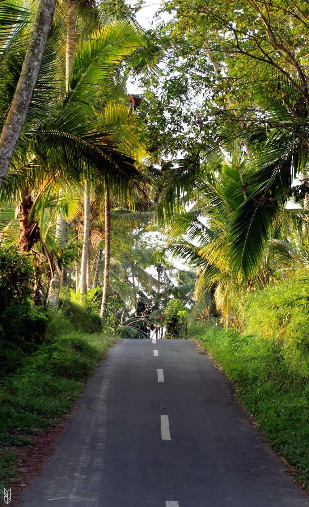 voyager à Bali en scooter