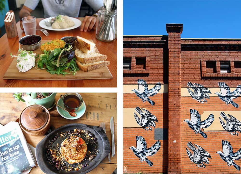 Saluna cafe et Momo cafe - Newcastle