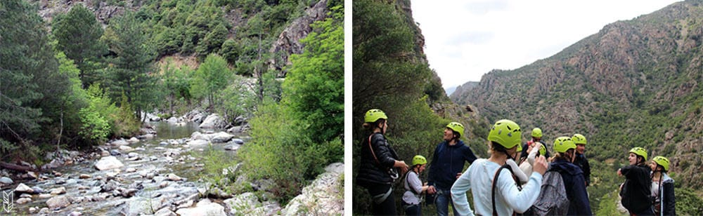 la vallée de l'Asco en Corse