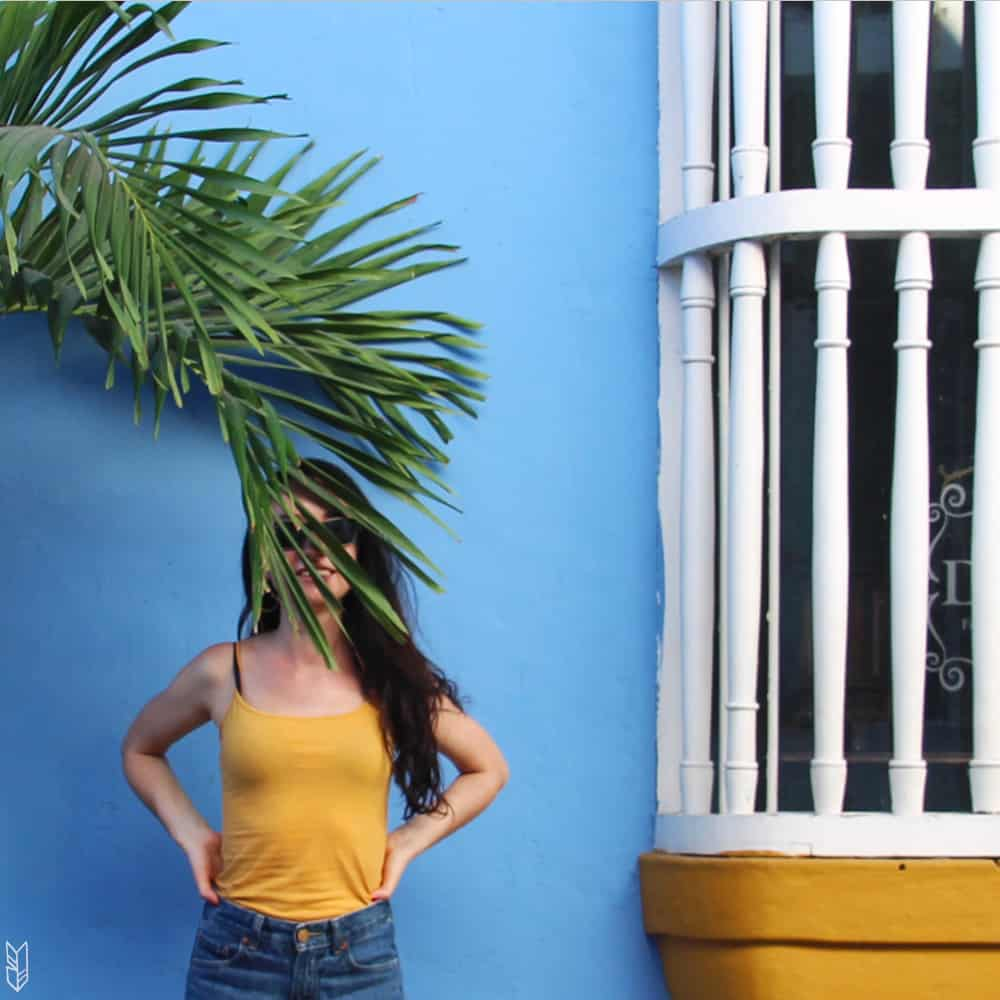 cliché palmier