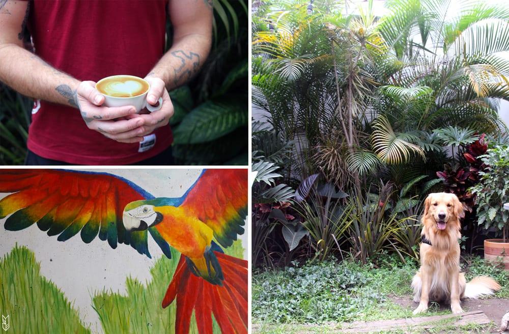 cafe-revolucion-medellin-colombie-meilleur