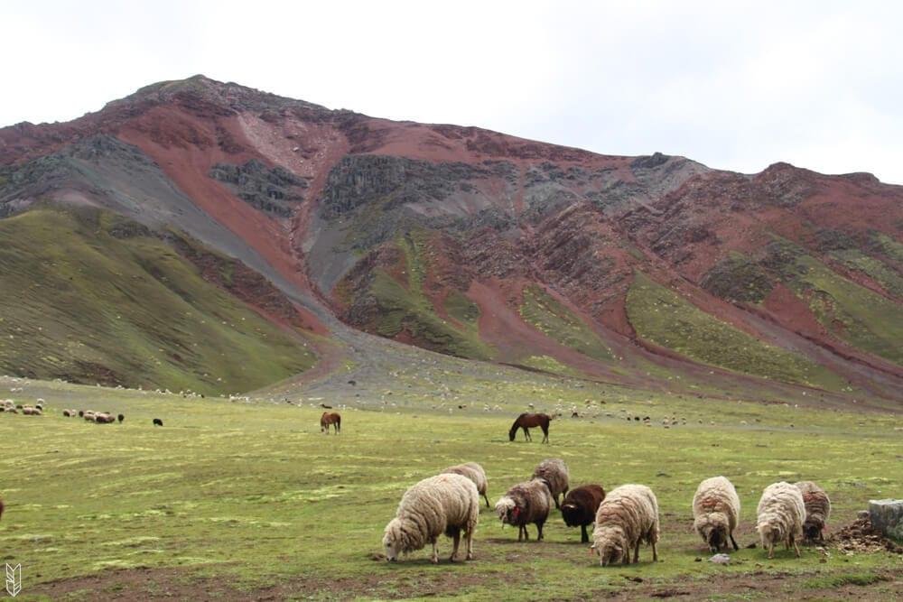 le Pérou - randonner pour se recentrer
