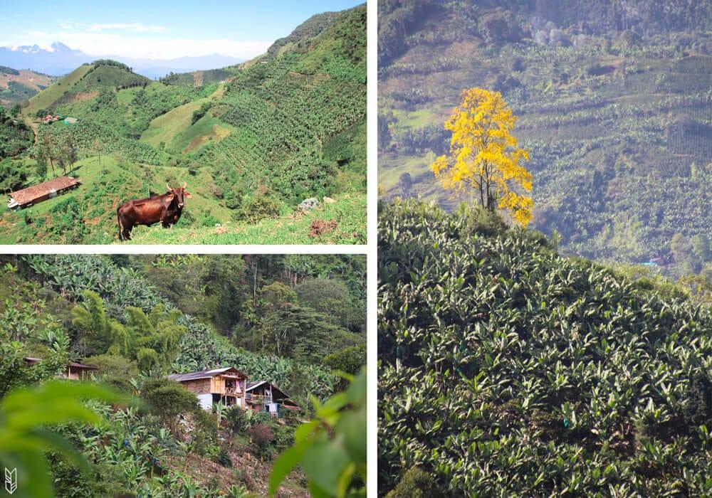 Les randonnées à Jardín en Colombie