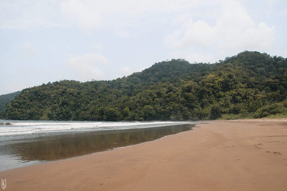 quand la mer rencontre la jungle