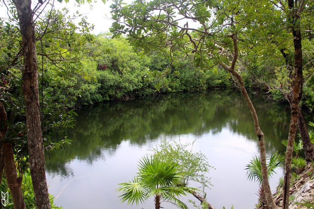 Cenote des res ruines Xel-ha - Tulum